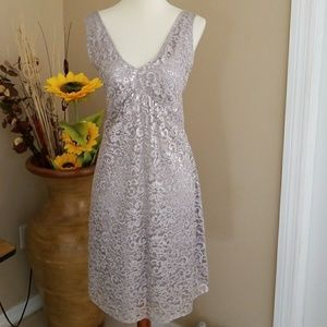 The Limited Silver Lace Dress